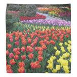 Tulip Gardens Kerchief