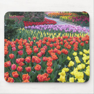 Tulip Gardens Mouse Pad
