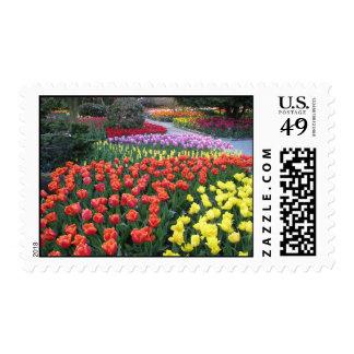 Tulip Gardens Postage Stamp