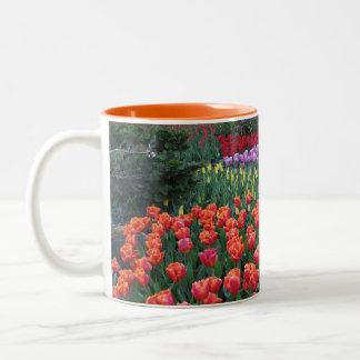 Tulip Gardens Two-Tone Coffee Mug