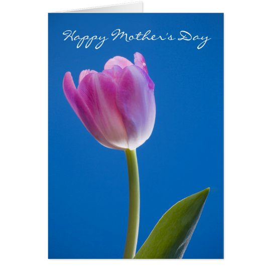 Tulip, Happy Mother's Day Card