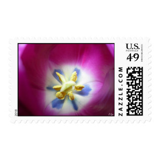 Tulip Heart Stamp