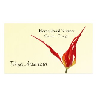 Tulip Horticultural business card