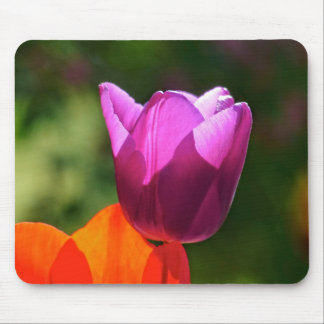 Tulip in bright light mouse pad