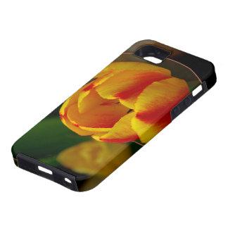 Tulip iPhone SE/5/5s Case