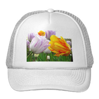 Tulip Love Trucker Hat