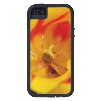 tulip macro iPhone SE/5/5s case