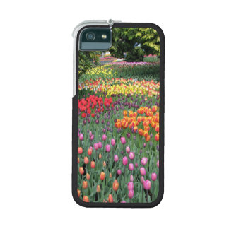 Tulip Meadow iPhone 5 Covers