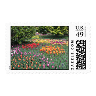 TULIP MEADOW POSTAGE