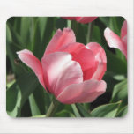 Tulip Mouse Mats