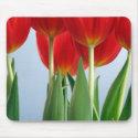 Tulip Mousepad mousepad