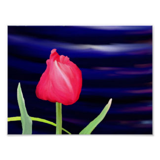 Tulip on Blue Pot Poster