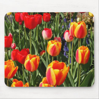 Tulip Patch Mouse Pad