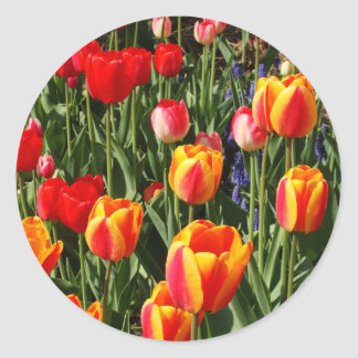 Tulip Patch Classic Round Sticker