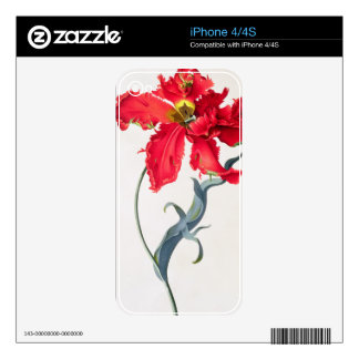 Tulip: Perroquet Rouge Decals For The iPhone 4