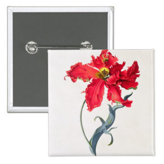 Tulip: Perroquet Rouge Pinback Button