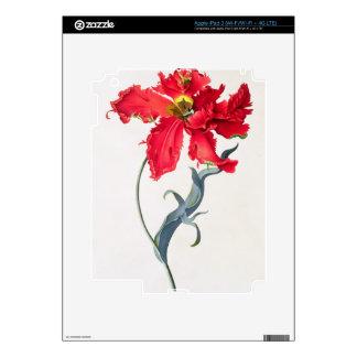 Tulip: Perroquet Rouge iPad 3 Skins