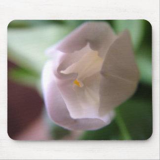 Tulip Photo Mouse Pad