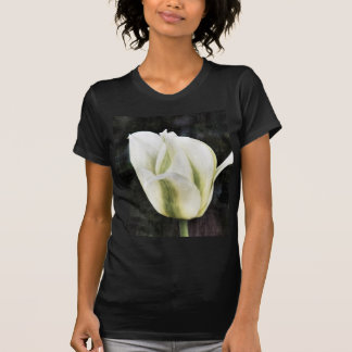Tulip photographed by Tutti T-shirt