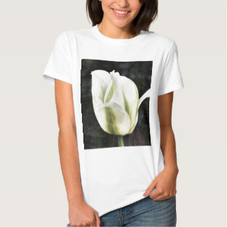 Tulip photographed by Tutti Tee Shirt