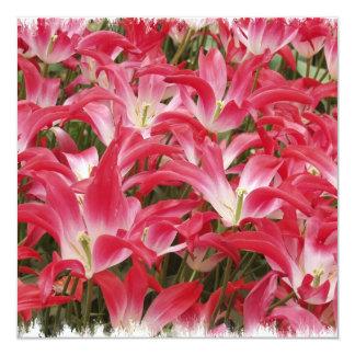 "Tulip Photos Invitation 5.25"" Square Invitation Card"