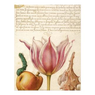 tulip pink catepillar letterhead