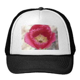 tulip pink fringe tulip trucker hat