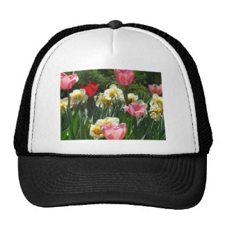 tulip pink tulip and daffodil hats