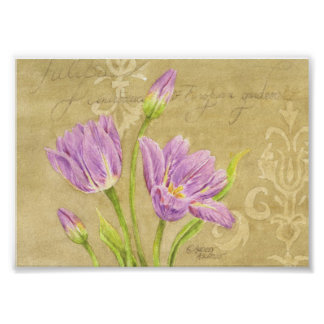 Tulip Poster Purple Garden Notes 7x5