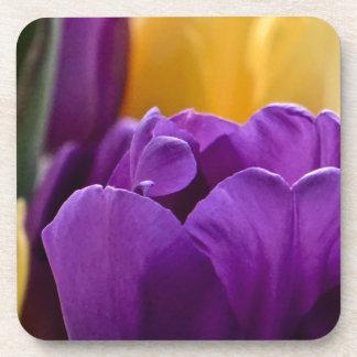 Tulip Purple Drink Coaster