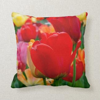 Tulip Rainbow American MoJo Pillows