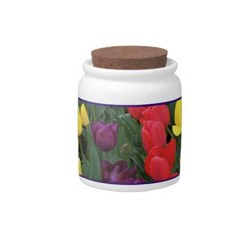 Tulip Rainbow Candy Jars