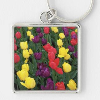 Tulip Rainbow Keychain