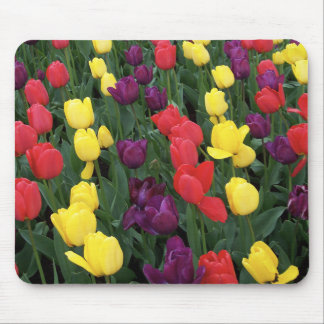 Tulip Rainbow Mouse Pad