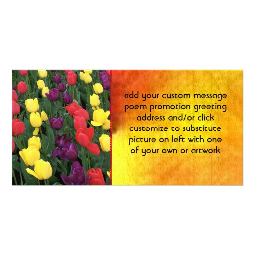 Tulip Rainbow Photo Card Template