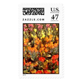 Tulip Rainbow Postage