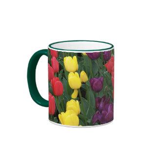 Tulip Rainbow Ringer Mug