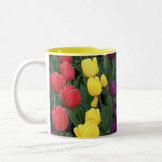 Tulip Rainbow Two-Tone Coffee Mug