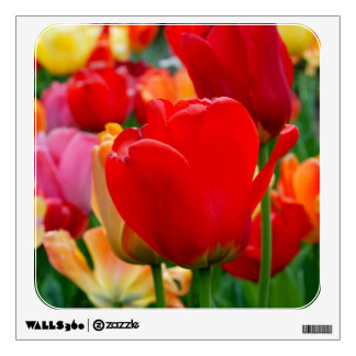 Tulip Rainbow Wall Decal