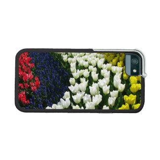 Tulip Rainbow Wave iPhone 5/5S Cases