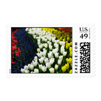Tulip Rainbow Wave Stamps