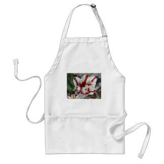tulip,red and white fringe adult apron