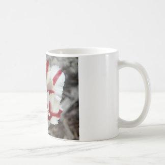 tulip red and white fringe mugs