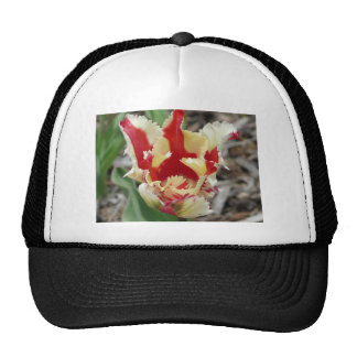 tulip,red and yellow fringe trucker hat