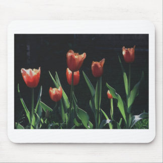 Tulip Red  Flare Mouse Pad