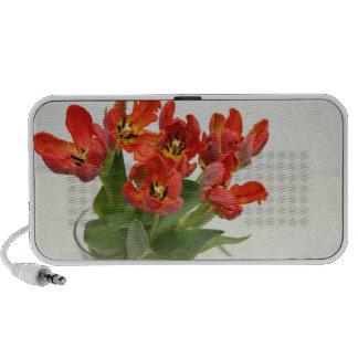 Tulip red iPod speaker
