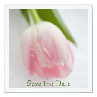 Tulip Save the Date Announcement