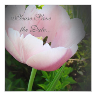 Tulip Save The Date Card
