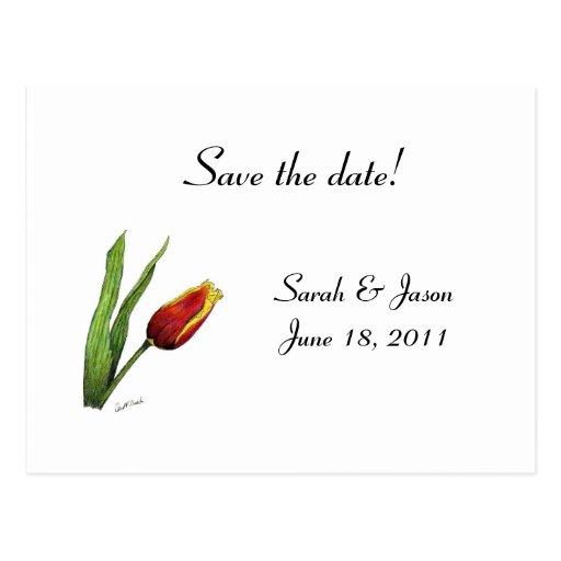 Tulip Save the Date Postcard