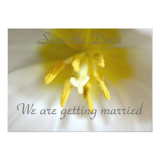 Tulip Save the Date-We are getting married Card